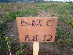 100% Dry With Instant Allocation Just Before Eleko Junction | Land & Plots For Sale for sale in Lagos State, Ibeju