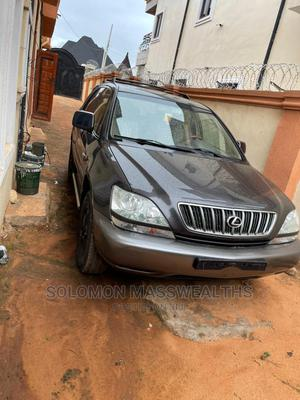 Lexus RX 2006 300 Gray | Cars for sale in Anambra State, Awka