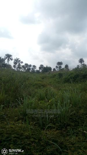 IVY Estate Deed of Conveyance and a Registered Survey Plan | Land & Plots For Sale for sale in Rivers State, Ikwerre