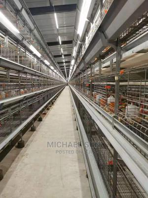 China Imported Battery Cage   Farm Machinery & Equipment for sale in Ogun State, Ikenne