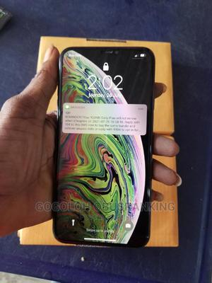 Apple iPhone XS Max 64 GB Gray | Mobile Phones for sale in Delta State, Warri