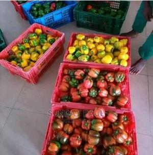 Rayuwa Farms Limited | Livestock & Poultry for sale in Abuja (FCT) State, Wuse