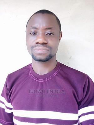Online Publicist | Advertising & Marketing CVs for sale in Lagos State, Ikeja