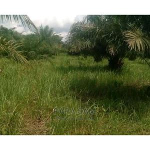 Survey and Receipt | Land & Plots For Sale for sale in Ogun State, Abeokuta North