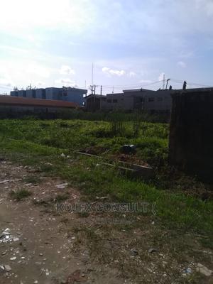 2 Plots of Land Graceland Estate, Satellite Town Lagos | Land & Plots For Sale for sale in Lagos State, Ikeja