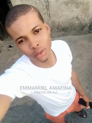 Emmanuel Amafina   Sales & Telemarketing CVs for sale in Lagos State, Apapa