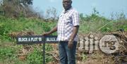 Affordable And Discount Sales Of Lands | Land & Plots For Sale for sale in Ogun State, Ifo