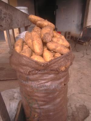 Irish Potato   Meals & Drinks for sale in Plateau State, Jos