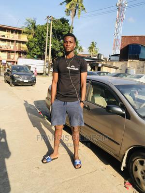 Job Seeking | Driver CVs for sale in Lagos State, Amuwo-Odofin