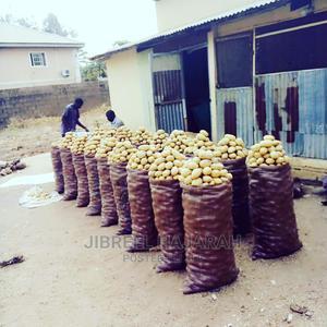Irish Potatoes   Meals & Drinks for sale in Abuja (FCT) State, Gwagwalada