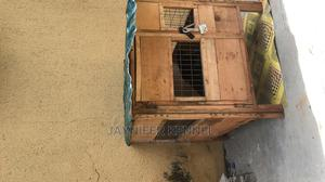 Foldable Dog Cage   Pet's Accessories for sale in Ogun State, Obafemi-Owode