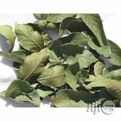 Mint Leaves Dried Mint Leaves Herbs And Spices