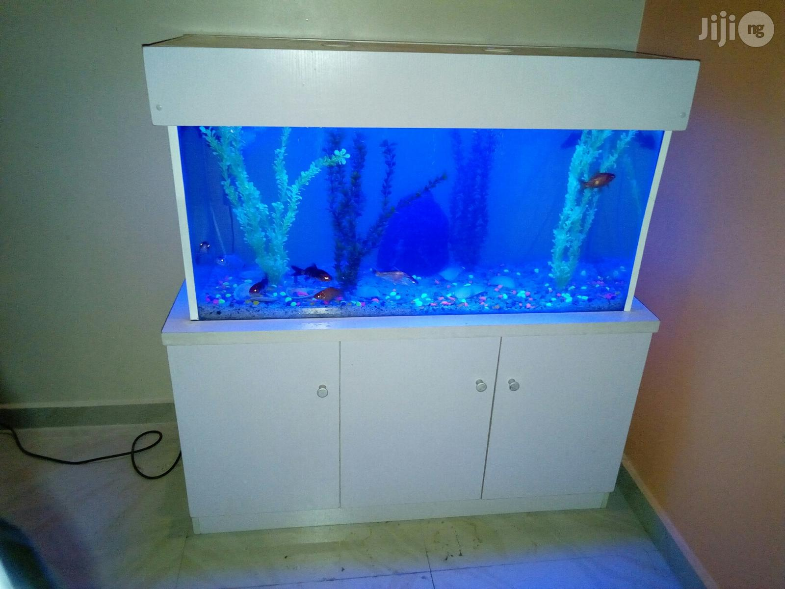 Ready Made Aquarium Now Available