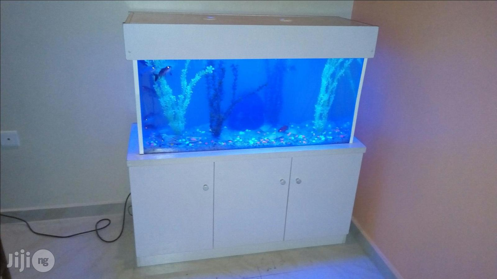 Ready Made Aquarium Now Available | Fish for sale in Ikeja, Lagos State, Nigeria