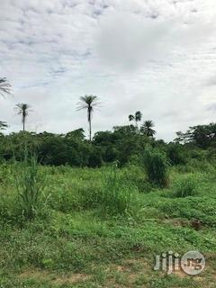 Archive: Tractor-able Agric Farm Land For Lease/ For Sale