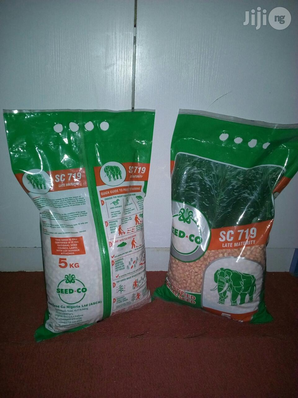 White Hybrid Corn Seed | Feeds, Supplements & Seeds for sale in Kaduna / Kaduna State, Kaduna State, Nigeria